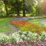 Park Révfalu