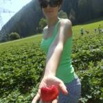 Erdbeer Stück