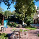 Hotel Livia - Garten