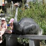 Zoo Und Ozeaneum Rotterdam